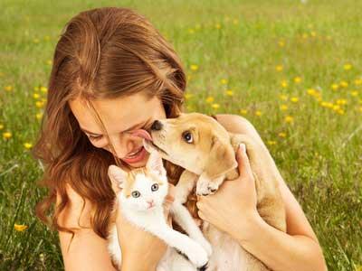 Traumdeutung: Begegnung mit Tieren im Traum